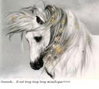 Un cheval au vent !
