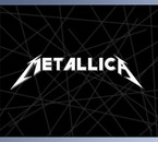 "love forever ! metallica c'est "" the group"" !"