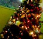 Sapiin de Noël de la Cяeche au Frangiin