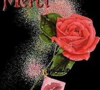 une belle rose pour joelle merci