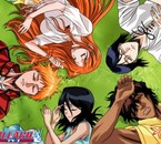 Rukia, Ichigo, Inoue, Ishida et Chad