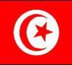 vive la tuniisi et si tes pa cOntent dégage diicii