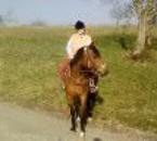 Nouba et moi