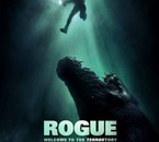 Rogue / Solitaire