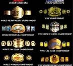 Voici tout les ceinture de la WWE