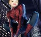 spideryanis