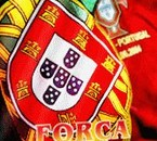 FORCA PORTUGAL  =D