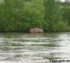 un bateaux de chasse
