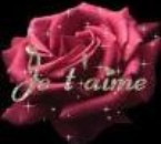 Musik & love it's fantastic