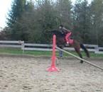 moi et quristal au saut (90cm mais elle saute 1m environ)