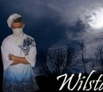 Wilstar (L'