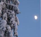 Et vous la glace et la neige, bénissez le Seigneur!