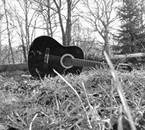 Ma guitare dans mon jardin