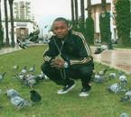 en duo avec les pigeons