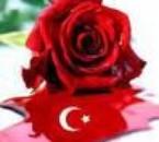 turkiyem <3'