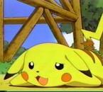 pikachu !! <3