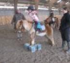 dressage de clochette en tant que poney de cirque...