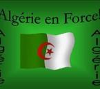 vive l'algerie mn bled