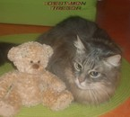 Mon chat, mon bébé mon amour quoi