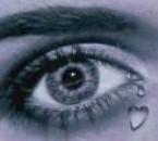 Quand les yeux nous parlent....