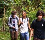 Nous dans la jungle