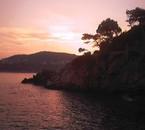 Vacannce :) ( aA )