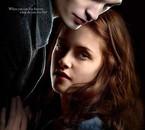 Twilight :facination