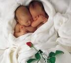 maman de jumeaux