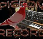 Pigeon Record