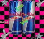 red bull donne des aile