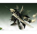 THE chevalier noir