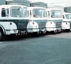 YL transport