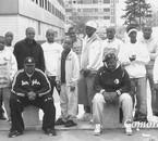Comoros4Eva