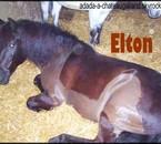 Elton , Poneyy Con ! Stage E.G.C <3
