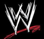 world wrestling entertaiment