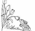 lapin et fleur^^