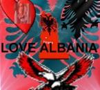 jtm albanie