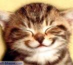 rire encore!!