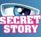 Logo secret story bleu