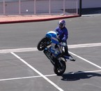 pauly stunt