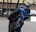 pauly stunt 5