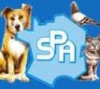 logo S.P.A