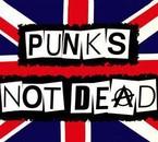 les punk ne disparaiteron jamai !!!