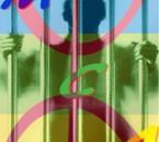 MCA-Amazigh-boy