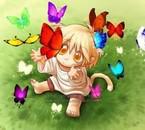 BB chaton é papillons
