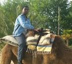 mon grand au sahara