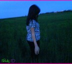 In Fields =D