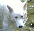 c trop cool un bon bain