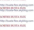 Blog de Busta Flex