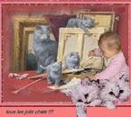 j'adore toujours les chats